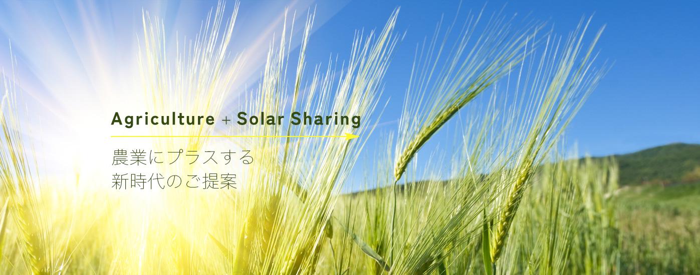 サンワシステム:農業にプラスする新時代のご提案